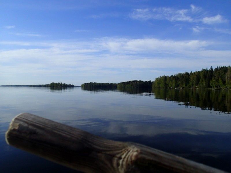 Soomes , Tammisaari kandis